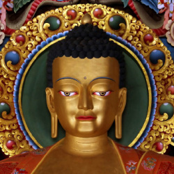 Dharma Education | Awakening Vajra International